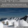 do eskimos use refrigerators