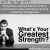 do you know your strengths and what you are good at