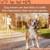 dog owners wtf fun facts