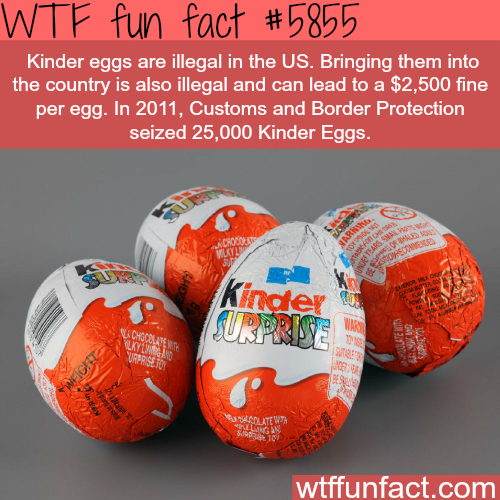 Don't bring Kinder eggs to the USA  - WTF fun facts