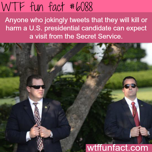 Don't joke about killing Trump or Hillary - WTF fun facts