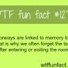 doorways and memory loss