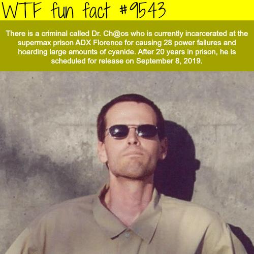 Dr. Ch@os-WTF fun fact