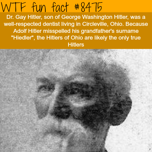 Dr. Gay Hitler - WTF fun facts