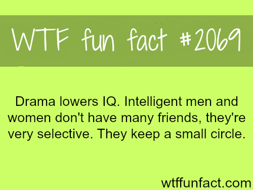 Drama lowers your IQ. - WTF fun facts