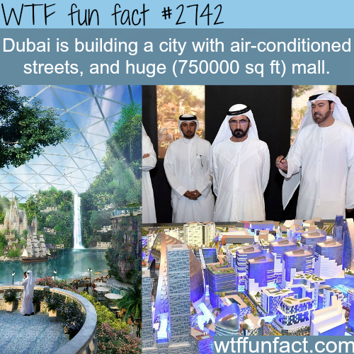 Dubai building a crazy new project - WTF fun facts