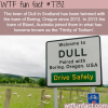 dull scotland wtf fun facts