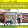 dutch village for alzheimer patients wtf fun