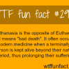 dysthanasia meaning