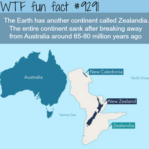 Earth's lost continent - WTF fun fact