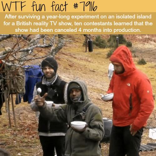 Eden (2016) - WTF fun facts