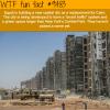 egypt building a new capital city wtf fun fact