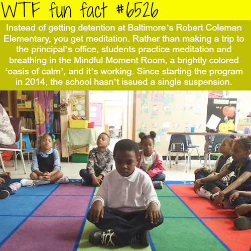 Elementary school in Baltimore where kids get meditation instead of detention - WTF fun facts
