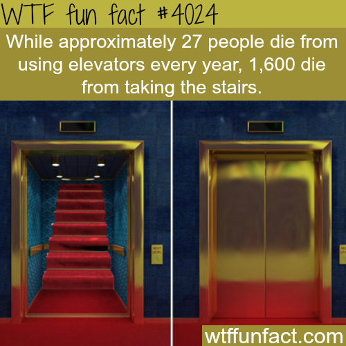 Elevators vs stairs