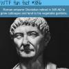 emperor diocletian wtf fun fact