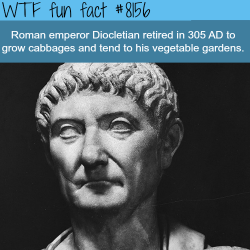 Emperor Diocletian - WTF fun fact