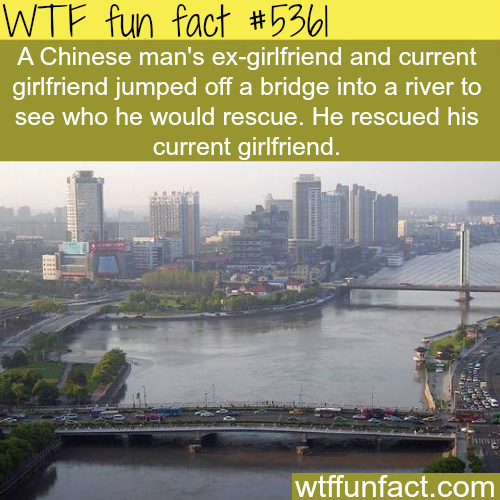 Ex-girlfriend and current girlfriend jump off a bridge - WTF fun facts