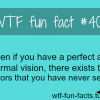 eyes facts