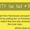 facebook facts