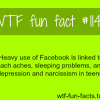 facebook facts social networks
