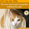 facial recognition software for cats