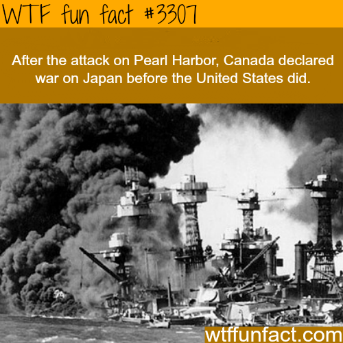 Facts about Canada -  WTF fun facts