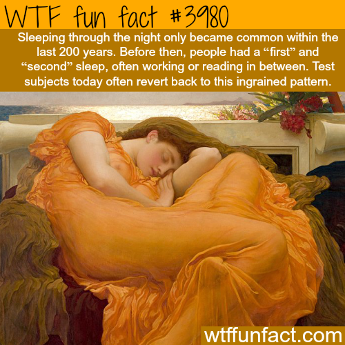 Facts about sleeping you never knew - WTF fun facts