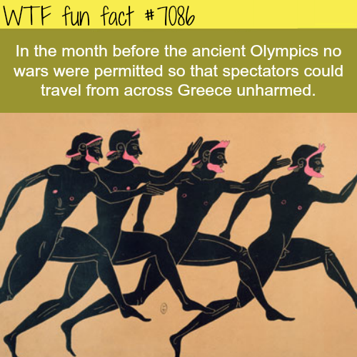 Facts about the ancient Olympics - WTF fun facts
