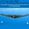 facts about the b 2 stealth bomber wtf fun facts