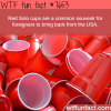 facts about the red solo cups wtf fun facts
