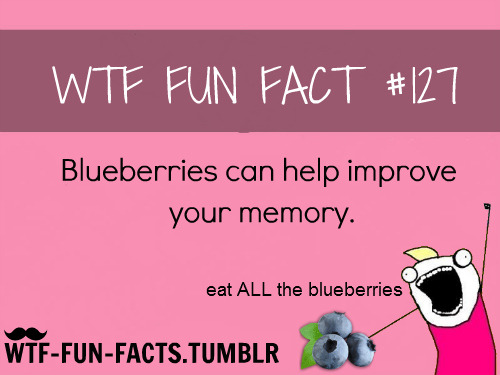 eat ALL THEBlueberries!