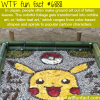 fallen leaf art in japan wtf fun fact