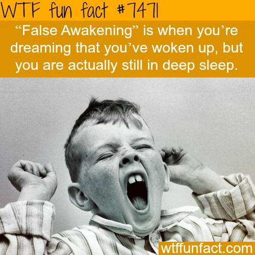 False awakening - FACTS
