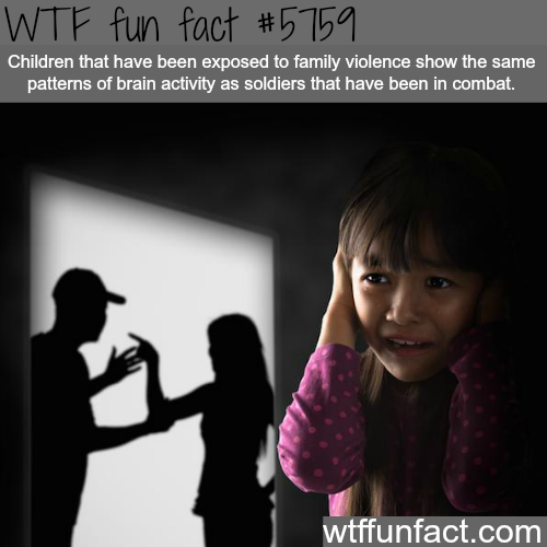 Family violence - WTF fun facts