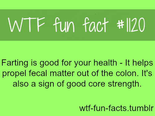farting facts