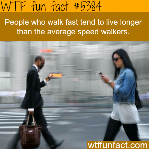 Fast walkers live longer - WTF fun facts