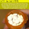 fda says prescription drugs are safe to use even