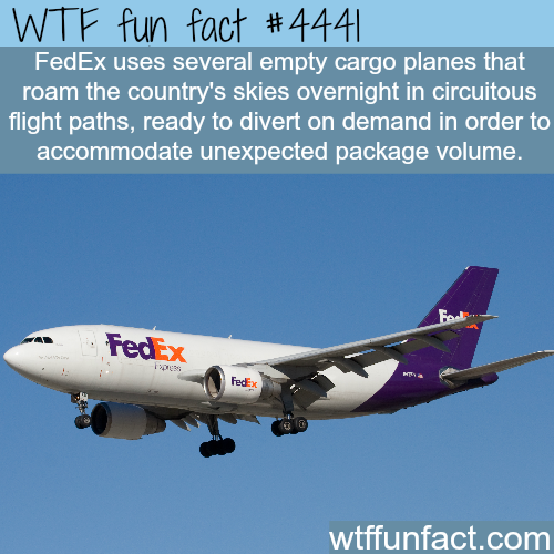 FedEx cargo airplanes -   WTF fun facts
