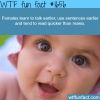 females learn to talk faster wtf fun facts