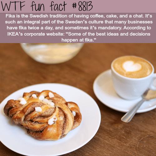 Fika - WTF fun facts