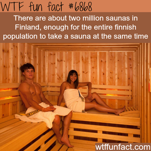 Finnish Sauna - WTF fun fact