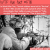 fire at their balls wtf fun facts