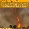 fire tornados in australia