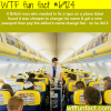 fixing a typo on a plane ticket wtf fun fact