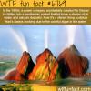 fly geyser wtf fun facts