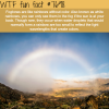 fogbows wtf fun facts