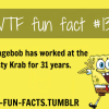 for more of wtf fun facts click