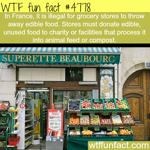 France food laws - WTF fun facts