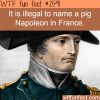 france s weird laws