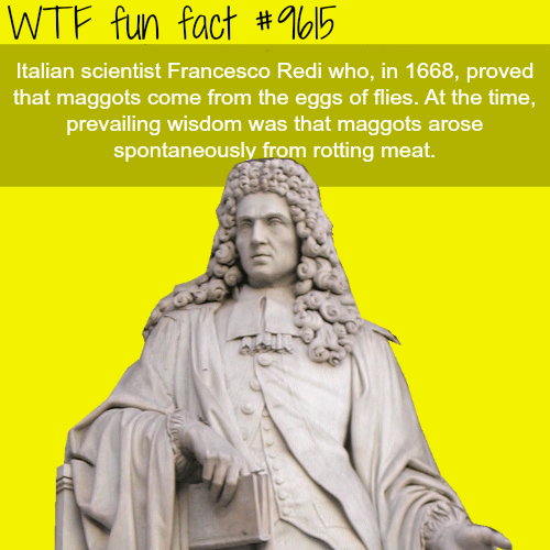 Francesco Redi - WTF fun fact